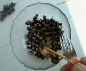 test cuisson bigorneaux au barbecue