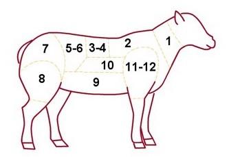 les différents morceaux de l'agneau