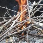 début feu de bois