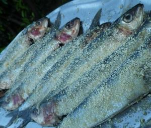 sardines croustillantes au barbecue