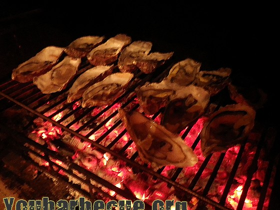 cuisson huitres au feu de bois