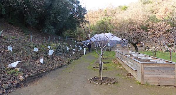 Tente de Laurens Largeur 1