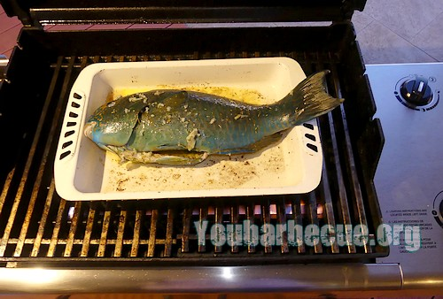 poisson-perroquet au barbecue