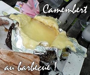 camembert widget